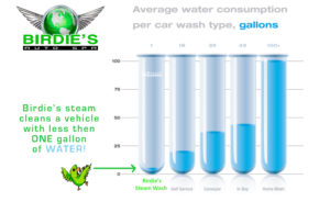 Birdies water consumption